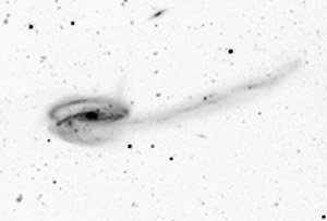 Черно-белое негативное изображение UGC 10214. Photo: RAS, Cambridge, UK